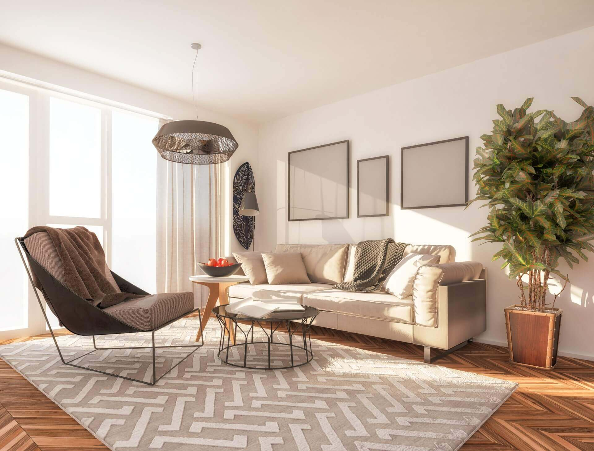 Area Rugs Flooring Newnan Ga Rugs For Home Amp Office